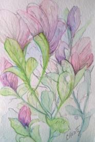 """""""Blushing Blooms"""""""